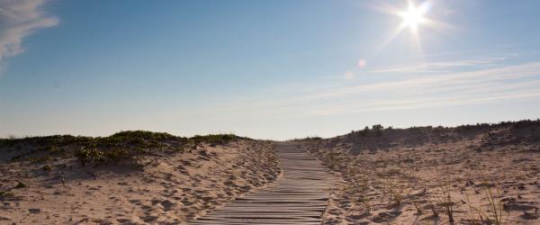 Beach boardwalk in Martha's Vineyard