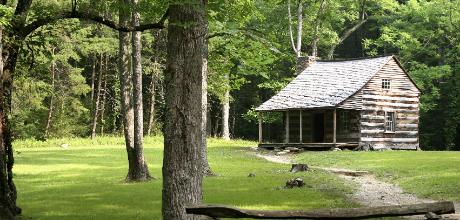 Cabin Getaways
