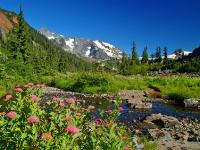 Mount Rainier, WA